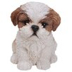 Sitting Shih Tzu Puppy Statue - Color: Brown/White - Hi-Line Gift Ltd. Garden Statues and Outdoor Accents
