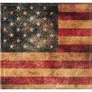 Nielsen Bainbridge Pinnacle 2Up American Flag Album