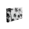 Kindred Sol Collective 'Palms' by Ed Fladung Photographic Print on Wrapped Canvas