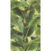 "Washington Wallcoverings African Queen II 33' x 20.5"" Tropical Leaf Print Wallpaper"