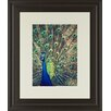 Classy Art Wholesalers Royally Blue I by Gail Peck Framed Photographic Print