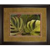 Classy Art Wholesalers Green for Ever I by Patricia Pinto Framed Painting Print