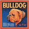 Signs 2 All Bulldog Graphic Art on Canvas