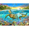 Signs 2 All Turtle Cove by Adrian Chesterman Graphic Art Plaque