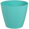 Wayfair Basics Plastic Pot Planter Set (Set of 6) Color: Surf, Size: 4 inch High x 4.7 inch Wide x 4.7 inch Deep - Wayfair Basics Planters