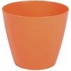 Wayfair Basics Plastic Pot Planter Set (Set of 6) Color: Tango, Size: 4 inch High x 4.7 inch Wide x 4.7 inch Deep - Wayfair Basics Planters