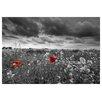Prestige Art Studios Red Pop Poppy Field Photographic Print
