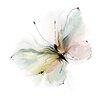 Prestige Art Studios Butterfly Painting Print