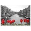Prestige Art Studios Love in Amsterdam Photographic Print
