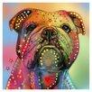 Prestige Art Studios Bulldog by Mark Ashkenazi Graphic Art