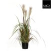 Mica Decorations Plume Grass Foxtail Plant in Plastic Pot