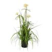 Mica Decorations Plume Grass Pom Pom in Pot