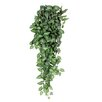 Mica Decorations Fittonia Hanging Plant