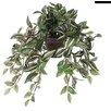 Mica Decorations Hängepflanze Dreimasterblume im Blumentopf