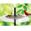 Droll Yankees Giant Seed Tray and Squirrel Guard