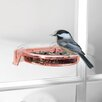 Tweet Spot Dish Tray Bird Feeder - Droll Yankees Bird Feeders