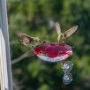 Ruby Sipper Window Hummingbird Feeder - Color: Clear - Droll Yankees Bird Feeders