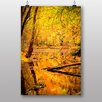 Big Box Art Poster Autumn Forest with a Pond, Fotodruck