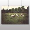 Big Box Art Curious Sheep Photographic Print on Canvas
