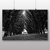 Big Box Art 'Black and White Woodland Street' Photographic Print