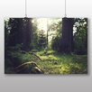Big Box Art Poster Forest Sunlight, Fotodruck
