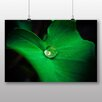 Big Box Art Poster Green Leaf and Water Drop, Fotodruck