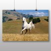 Big Box Art Horse Running Free No.3 Photographic Print