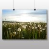 Big Box Art Summer Dandelions Photographic Print on Canvas