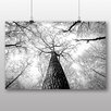 Big Box Art 'Tree Trunk' Photographic Print