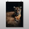 Big Box Art Young Tiger Photographic Print
