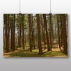 Big Box Art Woodland Park Photographic Print on Canvas