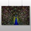 Big Box Art Poster Peacock Fotodruck