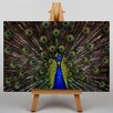 Big Box Art Peacock Graphic Art on Canvas