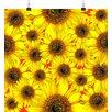 Big Box Art Yellow Sunflowers Flower No.6 Photographic Print