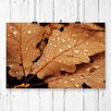 Big Box Art Autumn Leaves Photographic Print