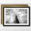 Big Box Art 'Tree Trunk Forest' Framed Photographic Print