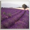 ERGO-PAUL Lavender View 1 Painting Print