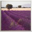 ERGO-PAUL Lavender View 2 Painting Print