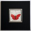 ERGO-PAUL Red Butterfly I Framed Painting Print