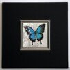 ERGO-PAUL Blue Butterfly II Framed Painting Print