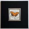 ERGO-PAUL Orange Butterfly I Framed Painting Print
