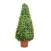 Northlight Seasonal Two-Tone Artificial Boxwood Tower Cone Topiary Tree in Pot
