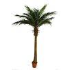 Northlight Seasonal Decorative Artificial Phoenix Palm Tree in Pot