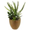 Northlight Seasonal Artificial Mixed Succulent and Fern Desk Top Plant in Pot