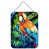 Caroline's Treasures Yo Yo Mama Parrot by Martin Welch Painting Print Plaque