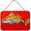 Caroline's Treasures Fish Red Fish Red Head by Martin Welch Painting Print Plaque