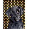 Caroline's Treasures Labrador Candy Corn Halloween Portrait 2-Sided Garden Flag