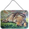 Caroline's Treasures Wolf and Hummingbird by Lyn Cook Painting Print Plaque