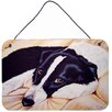 Caroline's Treasures Naptime Border Collie by Tanya and Craig Amberson Painting Print Plaque