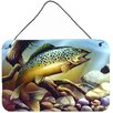 Caroline's Treasures Brook Trout by Tom Wood Graphic Art Plaque